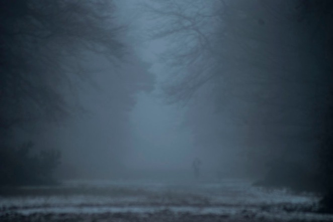 Avenue of Trees, M'boro